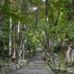 Path to Keisoku-ji