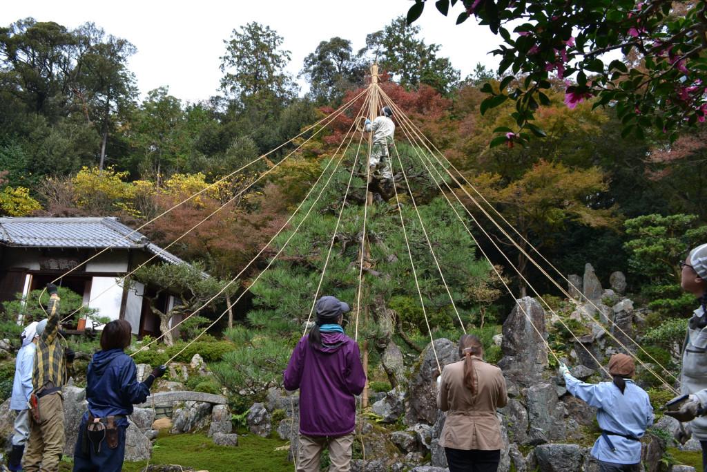 2015-Yukitsuri-web-68