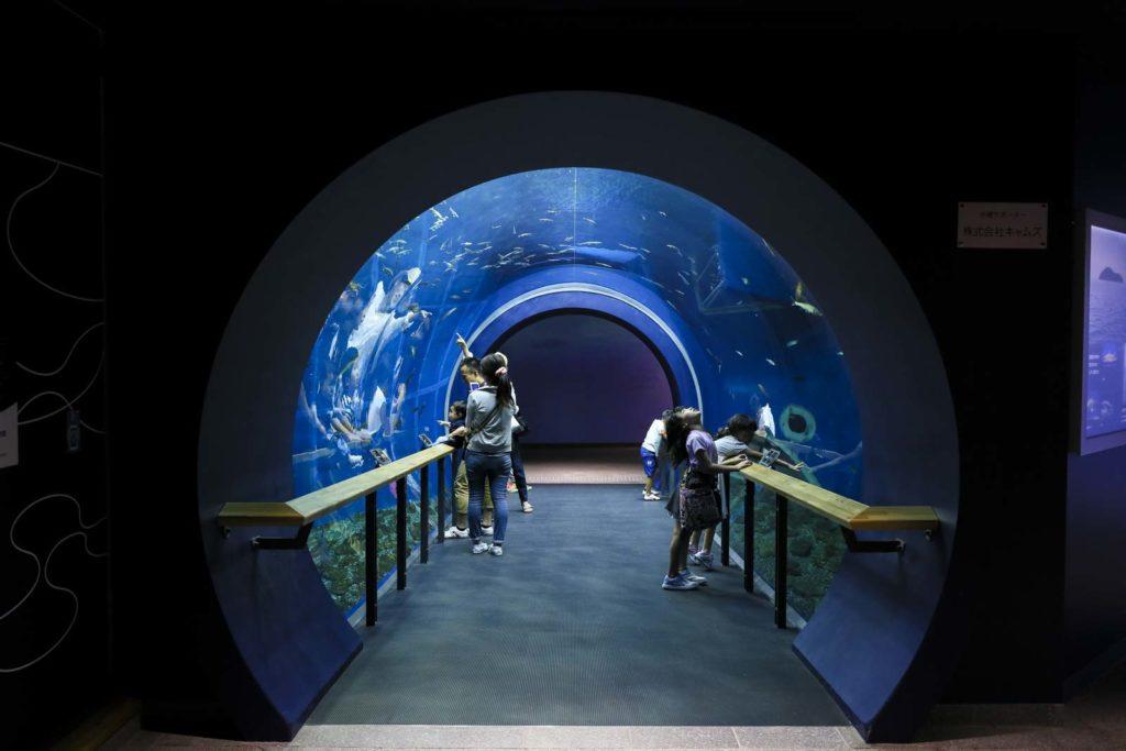 Lake Biwa Museum